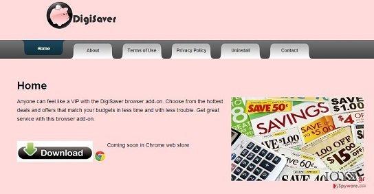 Στιγμιότυπο του DigiSaver