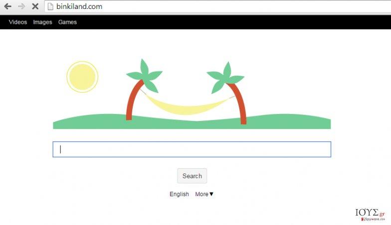 Στιγμιότυπο του Ιός Binkiland.com