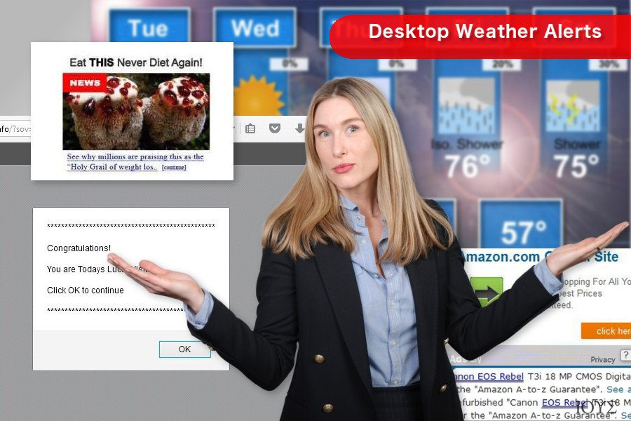 Στιγμιότυπο του Desktop Weather Alerts