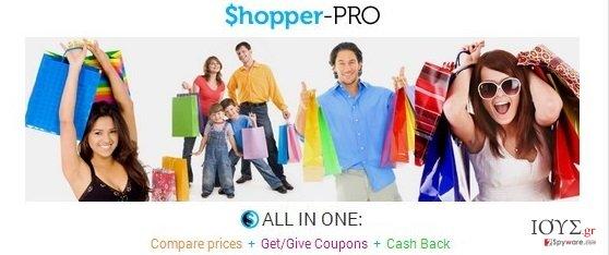 Στιγμιότυπο του Shopper Pro