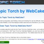 Στιγμιότυπο του Topic Torch