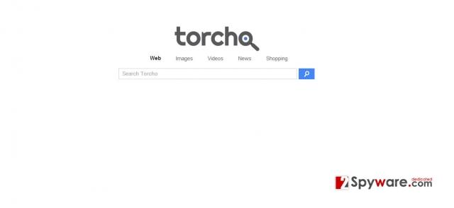 Στιγμιότυπο του Torcho Web virus